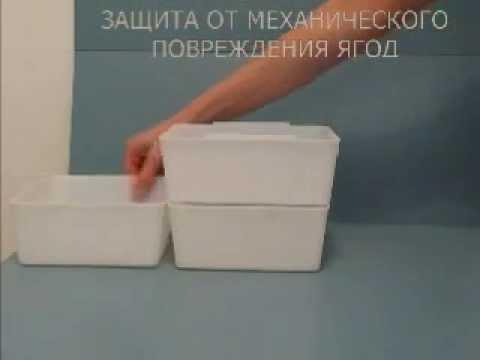 Лотки для сбора ягод, хранения, транспортировки