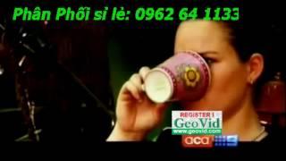 Leptin Green Coffee 1000 - Green coffee 1000 gold - green coffee 1000 Plus