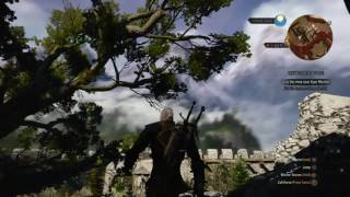 """The Witcher 3: Wild Hunt """"The Witchers Forge""""(Hidden Quest/NG+ Campaign)"""