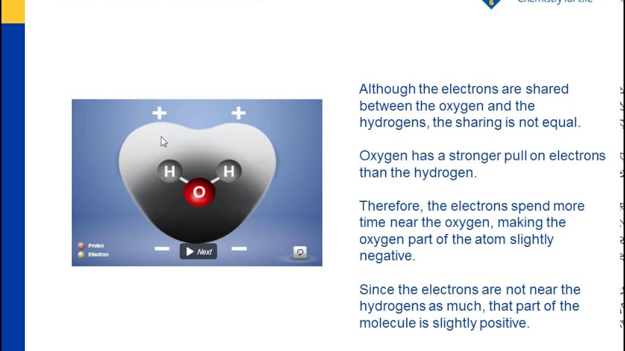 Water is a Polar Molecule | Chapter 5: The Water Molecule