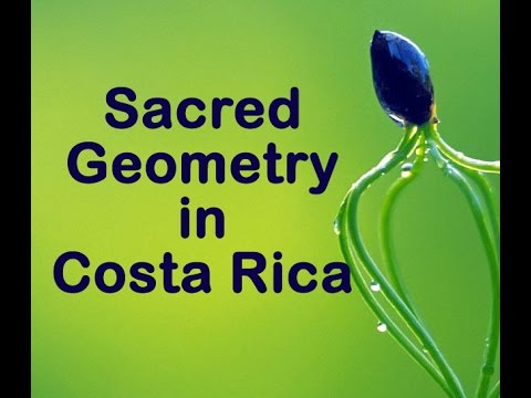 Sacred Geometry  Architect,  Designer & Consultant, Teaching about Nature.