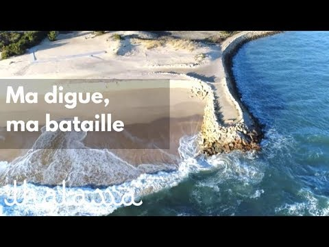 Ma digue, ma bataille (reportage complet) - Thalassa