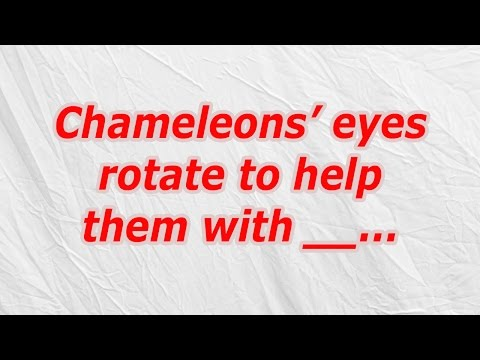 Chameleons' eyes rotate to help them with (CodyCross Crossword Answer)
