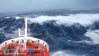 Морское дело Судовой (судовой механик)