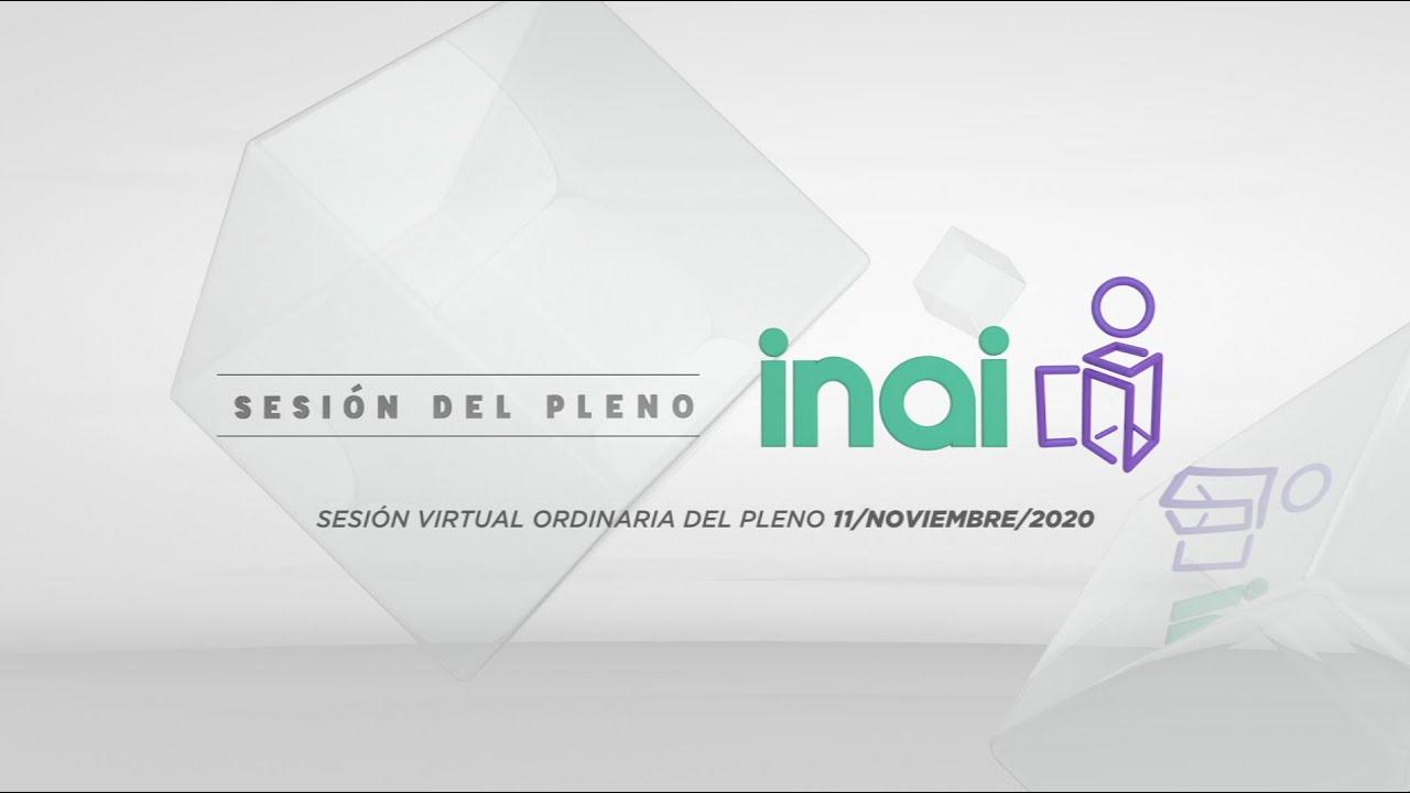 Sesión pública virtual del 11 de noviembre de 2020