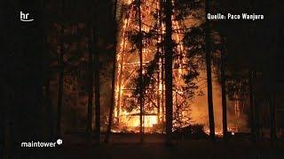 Goetheturm niedergebrannt - Frankfurter Wahrzeichen zerstört