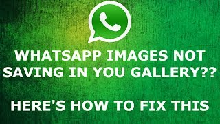 [Solved] How to FIX WHATSAPP FILES NOT SAVING IN YOUR GALLERY