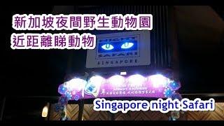 (親子好去處) 新加坡夜間野生動物園 Singapore night safari