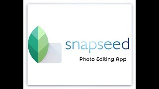 Snapseed Photo Editing App Review