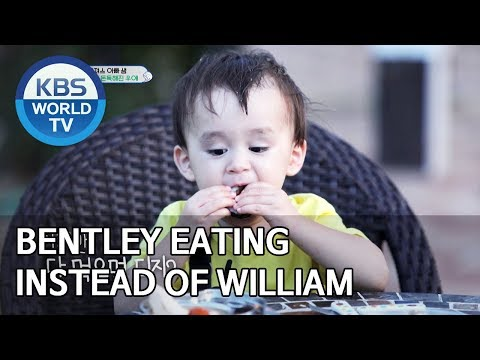 Bentley eating instead of William [The Return of Superman/2019.09.29]