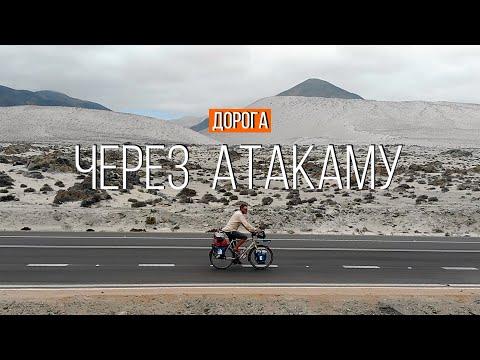 Каменный зоопарк в пустыне Атакама | Дорога вдоль океана | Путешествие по Чили | #43