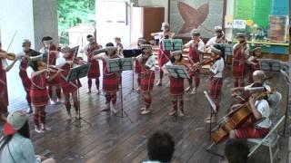2014「親愛提琴故事節」-- G弦之歌