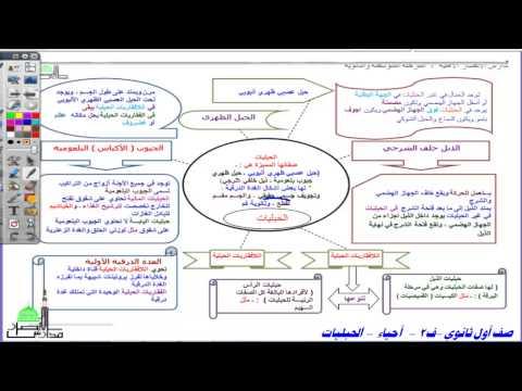 أول ثانوي أحياء ف2 شعبة الحبليات