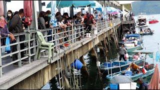 西貢生劏泥鯭 油錐 左口魚 比目魚 大墨魚