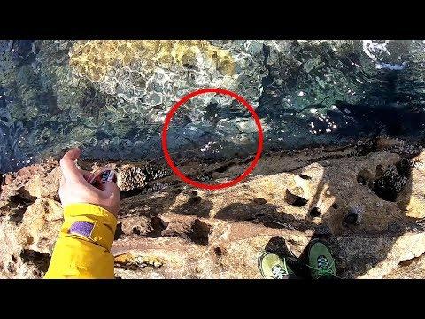 磯釣り中に発見した「この隙間」に糸を垂らしたら爆釣ポイントだった件