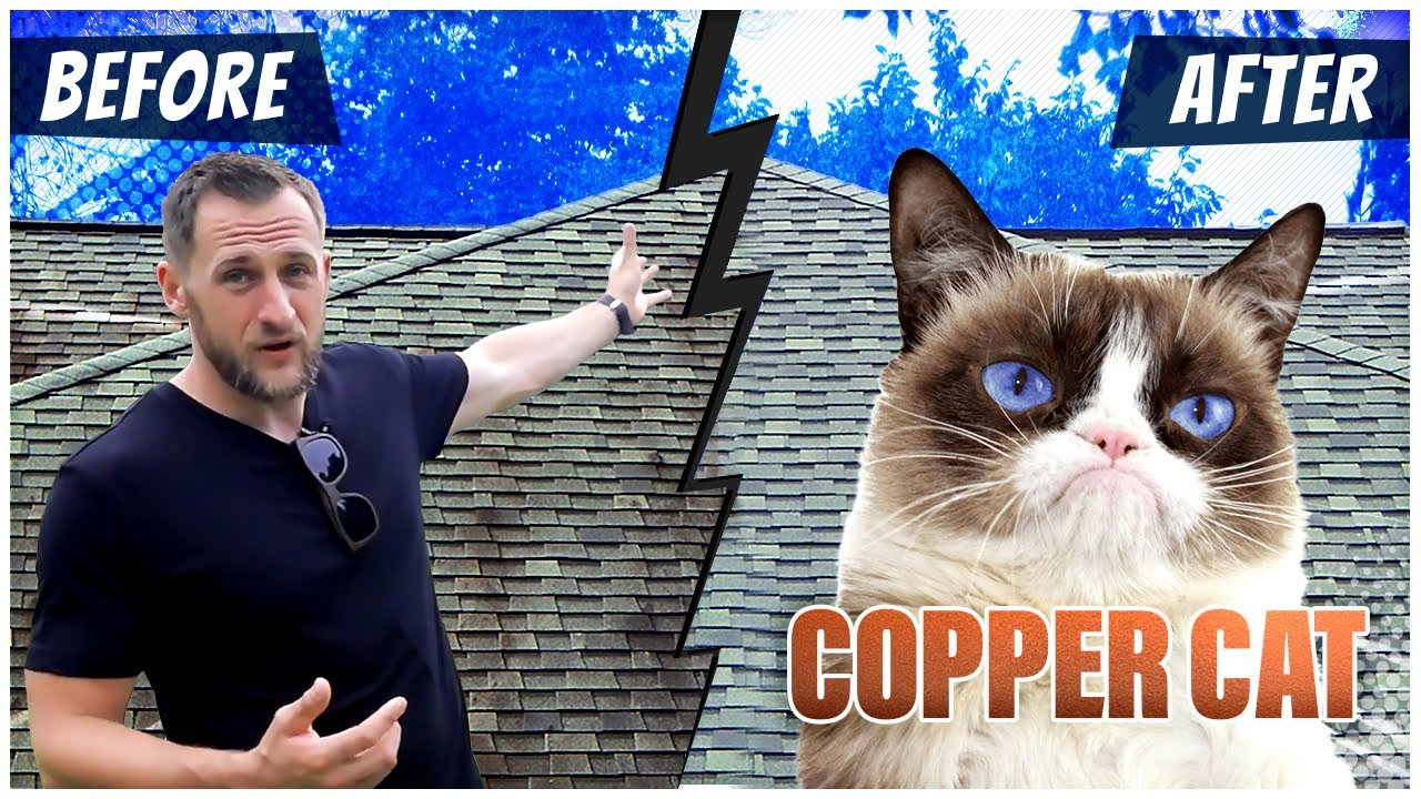Roofing Cleaner Review  Copper Cat  roof algae removal