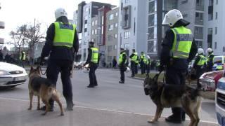 IFK Norrköping vs Hammarby