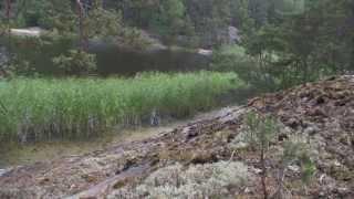 Gällnö, Stockholms skärgård. Stereo field recording. Rode NT4 + Tascam DR-100mkII.