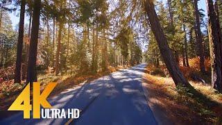 4k60fps-scenic-drive-chiwawa-river-road-leavenworth-washington-state-part-1