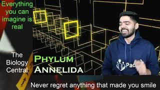 phylum aschelminthes imagine)