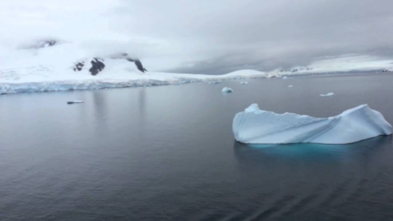 5 Best Antarctica Cruises 2019 (with Prices): Cruises to ...