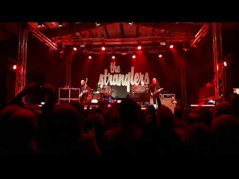 "THE STRANGLERS LIVE IN BOLOGNA ""INTRO + THE RAVEN """