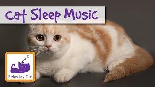 Cat Lullaby - Cat Sleep Music 🐱 #SLEEP01