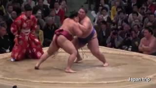 2017大相撲大阪春場所での遠藤 vs 逸ノ城の取組。