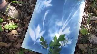 Spray paint cyanotype FUN OUTDOOR PROJECT - Summer Fun Series