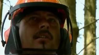 Требования охраны труда при работе с бензопилой STIHL!(, 2016-07-06T06:42:39.000Z)