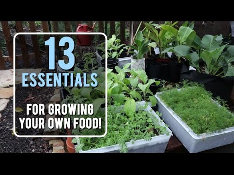 13 Essentials For Growing Your Own Food!