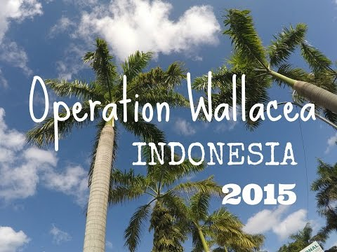 Indonesia Vlog Part 6 (Operation Wallacea)