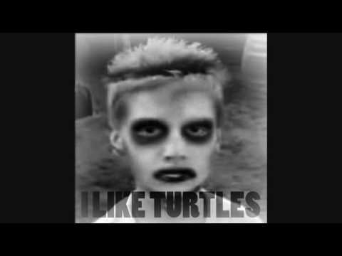I Like Turtles - REMIX 2010