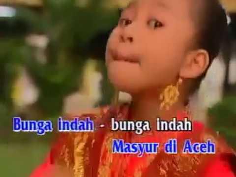 Bungong Jeumpa lagu daerah nanggroe aceh darussalam beserta lirik DTECHNOINDO