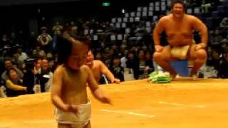 高見盛 対 高見盛の真似をする4歳児(わんぱく相撲 広島巡業にて)