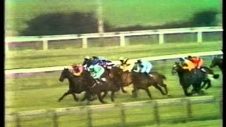 1983 Daily Express Triumph Hurdle