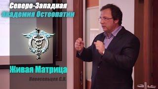 Обучение Остеопатии. Живая Матрица.