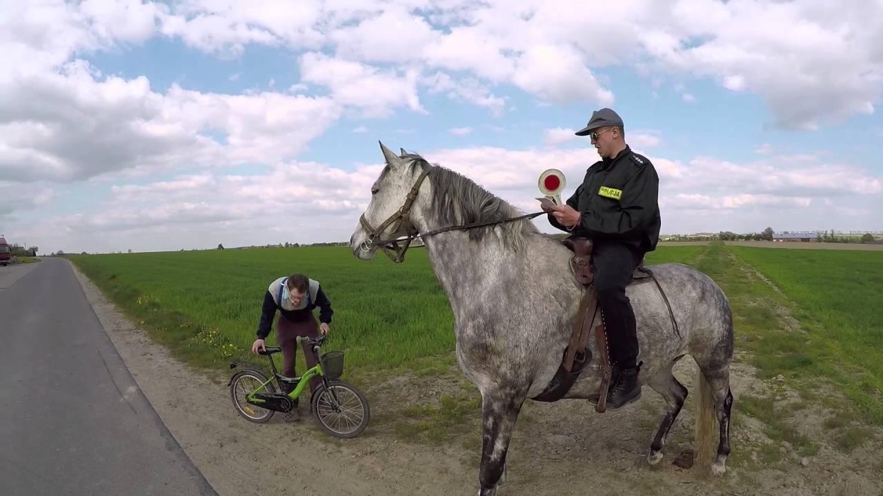Koński zwis VS Policja |Kabaret Malina
