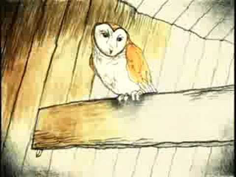 "Neko Case - ""Maybe Sparrow"""