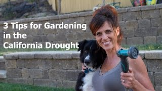 Three Tips for Gardening in the California Drought
