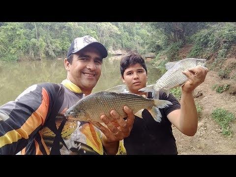 Pescaria de  curimbas e um peixe novo a saga Marcelo e Tom  ll