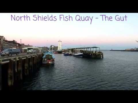 North Shields Fish Quay - The Gut