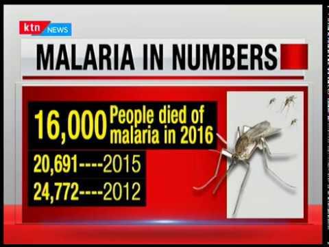 BottomLine Africa: New Malaria threat