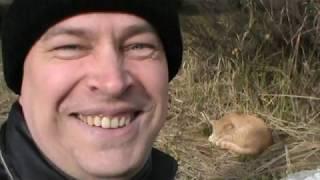 Геннадий Горин и рыжая кошка