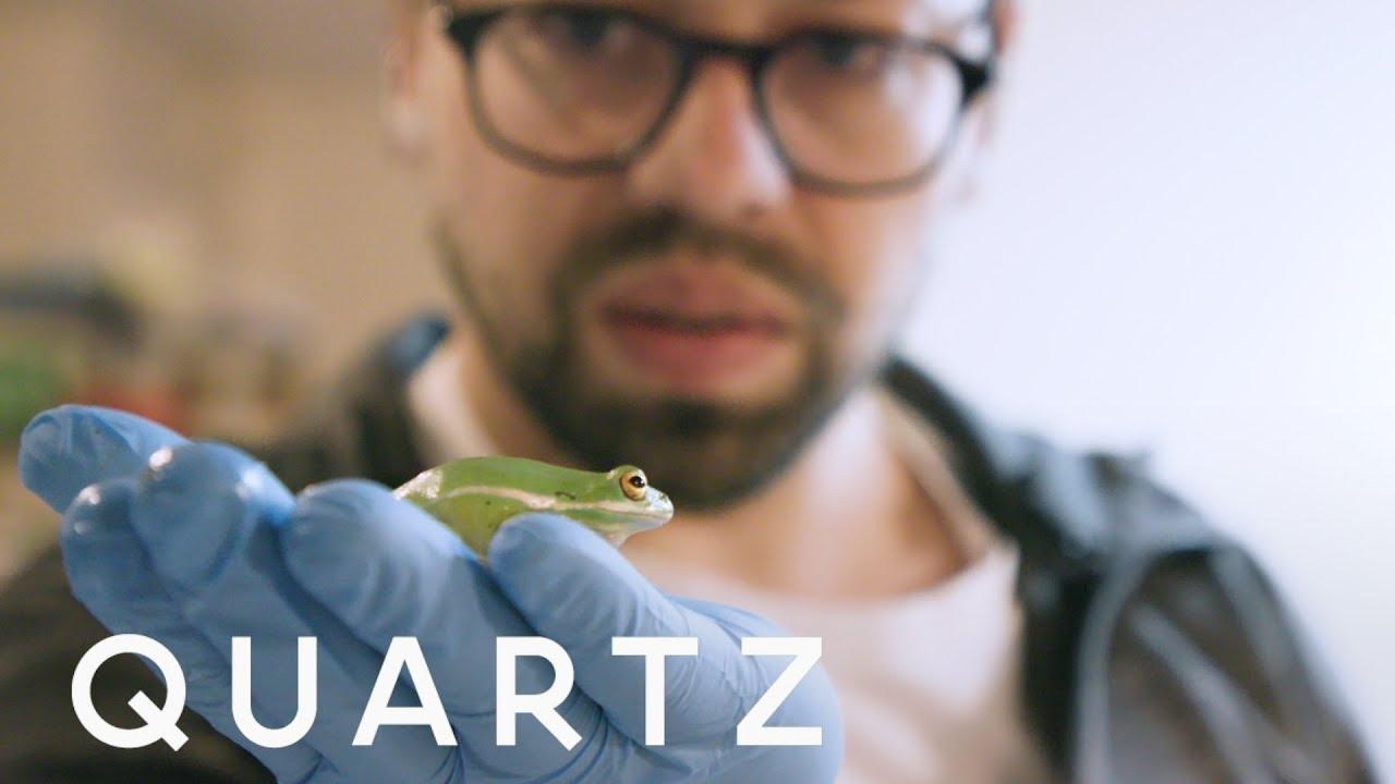 Biohacker sells DIY CRISPR genetic engineering kits — Quartz