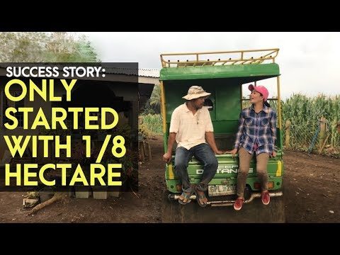Ampalaya Farming: just started with 2,000 SQM and transformed it into a 8 Hectares ampalaya farm