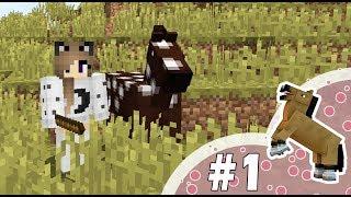 Pikselowe kopytka #1 - Pierwsza noc w jaskini!
