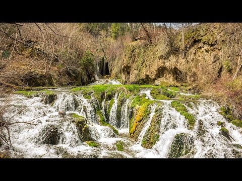 Roughlock Falls In Spearfish Canyon - The Black Hills, South Dakota