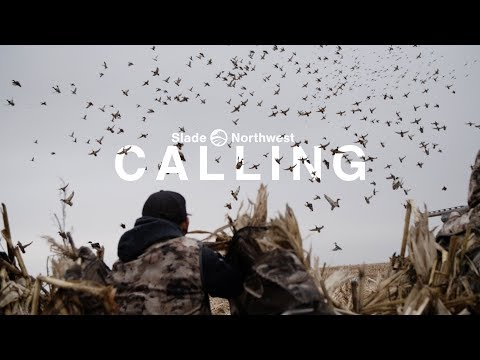 """Duck Hunting - """"Calling, The Pacific Calls Story"""""""
