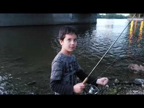 Pêche à Montréal. Gros poisson chat / Achigan / Bass and Catfish